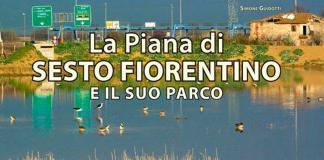 La piana di Sesto e il suo parco di Simone Guidotti