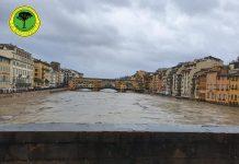 Arno - Racchetta