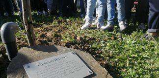 tomba Gemma Benelli
