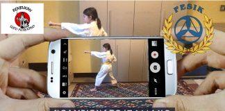 campionato virtuale di karate