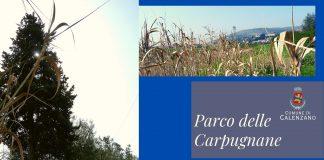 Parco delle Carpugnane