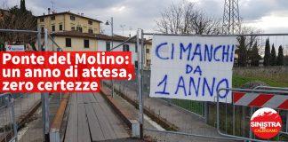 pmolino