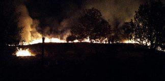 Incendio Lago Querciola