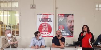 Falchi-Calosi